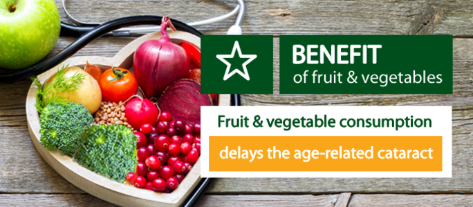 The high consumption of fruit & vegetables delays the age-related cataract.